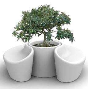 qui-est-paul-sardana-bank-with-planter-white