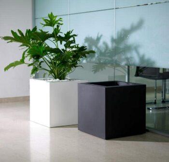 pflanzgefaess-quadratisch-kubus-kunststoff-hydro-rollen-40-50-farben