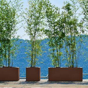 xl-pflanzkasten-gross-breit-kunststoff-in-outdoor-farbwahl-braun