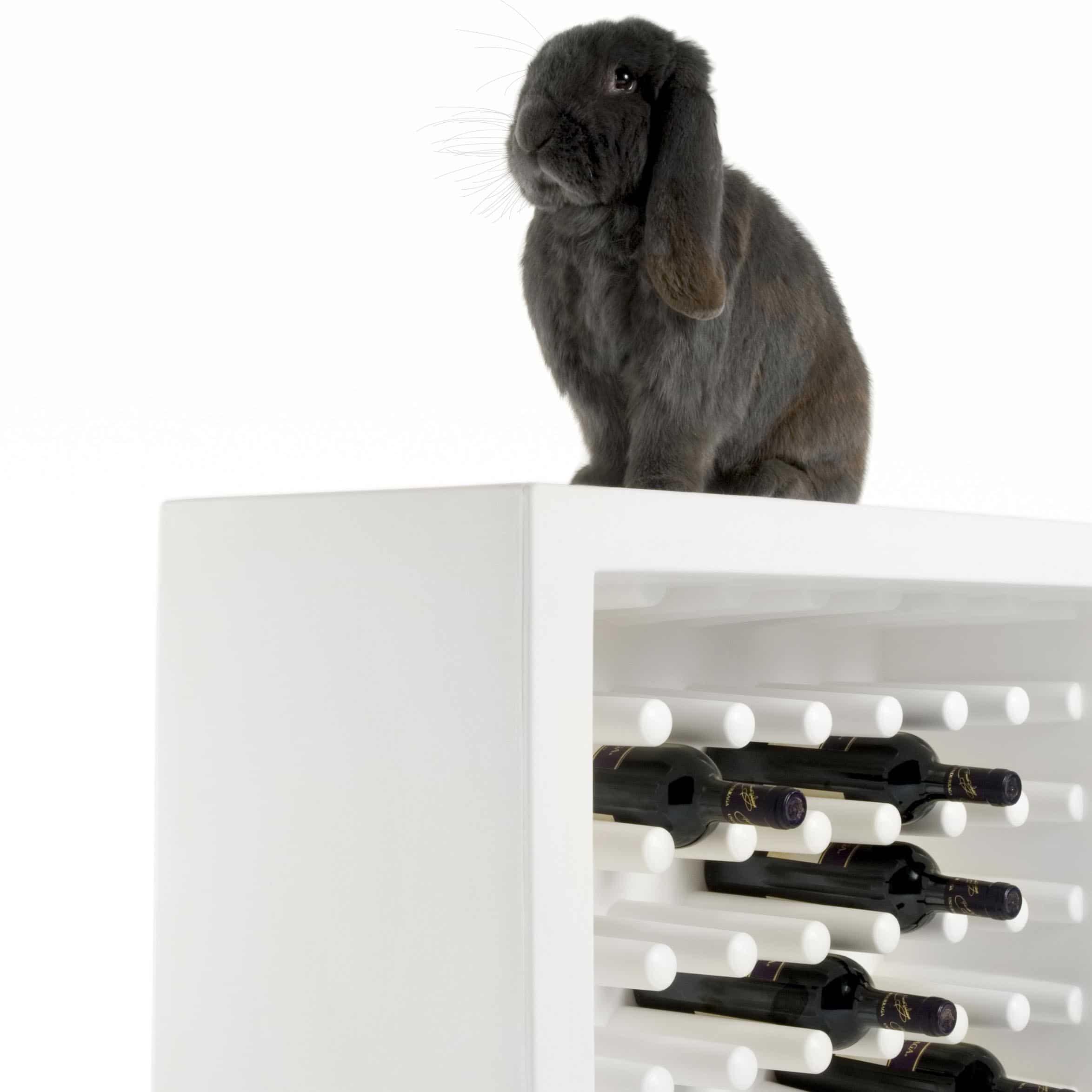 Slide Bachus Flaschen Regal Container Für Bis Zu 40 Flaschen Stapelbar