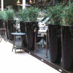 exklusiv-raumteiler-sichtschutz-pflanzgefaesse-gastronomie-plust-humprey-lack-schwarz