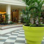 xl-pflanzgefaesse-shopping-mal-einkaufscenter-plust-rebelot-gruen
